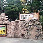 USJにはコーラの化石も!エリア内に隠れた化石を要チェック!