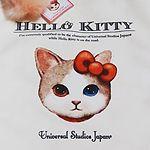 USJキャットキティグッズお土産2017 – ハローキティのリアルな猫ちゃんグッズ